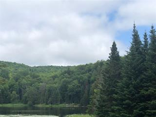 Lot for sale in Montcalm, Laurentides, Rue de Berne, 11997841 - Centris.ca