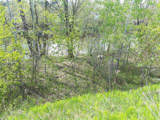Terrain à vendre à Lévis (Les Chutes-de-la-Chaudière-Ouest), Chaudière-Appalaches, Route des Rivières, 17070589 - Centris.ca