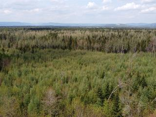 Lot for sale in Saint-Raymond, Capitale-Nationale, Rang de la Carrière, 20226943 - Centris.ca