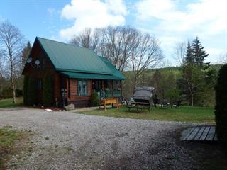 Maison à vendre à Hébertville, Saguenay/Lac-Saint-Jean, 126, Chemin du Lac-Gamelin Est, 26483747 - Centris.ca