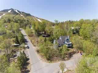 Cottage for sale in Potton, Estrie, 25, Chemin du Panorama, 24647317 - Centris.ca