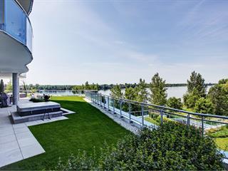 Condo / Appartement à louer à Laval (Sainte-Dorothée), Laval, 275, Rue  Étienne-Lavoie, app. 201, 25689948 - Centris.ca