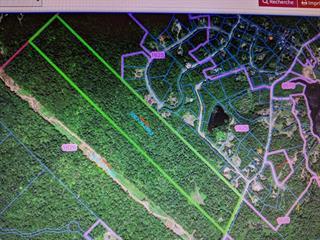 Terre à vendre à Sainte-Adèle, Laurentides, Chemin du Moulin, 21638133 - Centris.ca