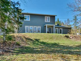 Maison à vendre à Saint-Sauveur, Laurentides, 301, Chemin  Lagounaris, 12315710 - Centris.ca