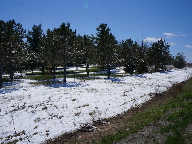 Terrain à vendre à Stanstead - Ville, Estrie, Chemin de Fairfax, 22329572 - Centris.ca