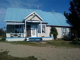 Maison à vendre à Saint-Urbain, Capitale-Nationale, 230, Rang  Saint-Jean-Baptiste, 25675630 - Centris.ca