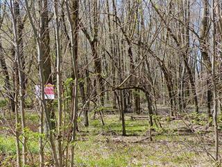 Terre à vendre à Noyan, Montérégie, Rue  Gauthier, 16057476 - Centris.ca