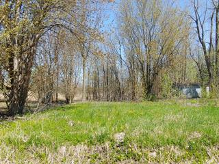 Terrain à vendre à Noyan, Montérégie, Rue  Beaver, 28845606 - Centris.ca