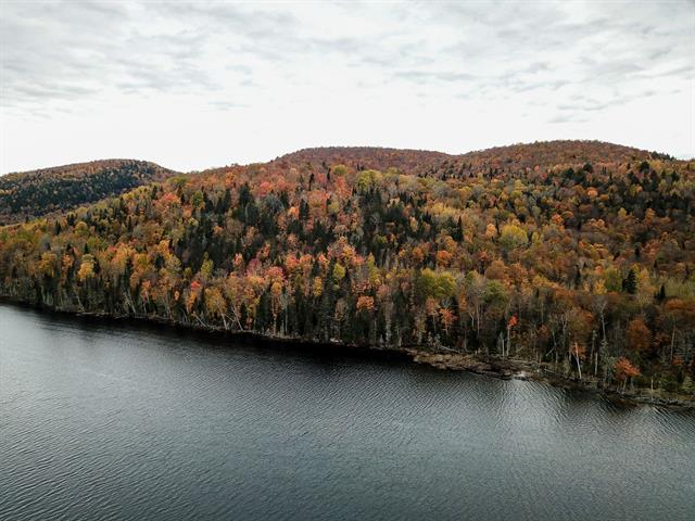 Lot for sale in Trois-Rives, Mauricie, Chemin du Lac-Dumont, 16677538 - Centris.ca