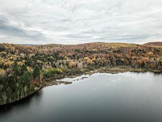 Lot for sale in Trois-Rives, Mauricie, Chemin du Lac-Dumont, 25676301 - Centris.ca