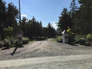 Lot for sale in Stanstead - Canton, Estrie, Chemin du Ruisseau-Gale, 13615937 - Centris.ca