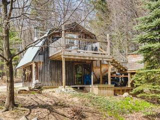 Maison à vendre à Denholm, Outaouais, 180, Chemin  Dumas, 10313740 - Centris.ca