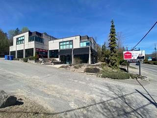 Bâtisse commerciale à vendre à Sainte-Adèle, Laurentides, 1400, boulevard de Sainte-Adèle, 27608602 - Centris.ca