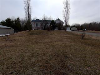 Maison à vendre à Eeyou Istchee Baie-James (Valcanton), Nord-du-Québec, 490, Route  393, 24575681 - Centris.ca
