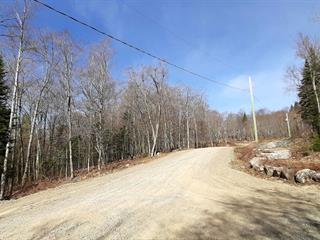 Lot for sale in Wentworth-Nord, Laurentides, Chemin des Cumulus, 17781324 - Centris.ca