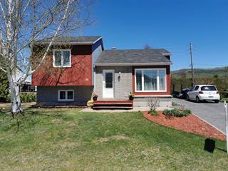 House for sale in Baie-Saint-Paul, Capitale-Nationale, 26, Rue  Ernest-Veilleux, 10650418 - Centris.ca