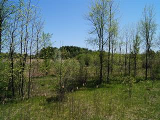 Lot for sale in Hemmingford - Canton, Montérégie, Route  219 Nord, 17602492 - Centris.ca