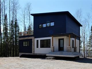 House for sale in La Corne, Abitibi-Témiscamingue, 7, Chemin  Simon-Robitaille, 15985101 - Centris.ca