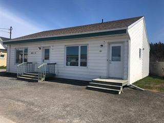 Duplex for sale in Sainte-Flavie, Bas-Saint-Laurent, 461 - 463, Route de la Mer, 24416028 - Centris.ca