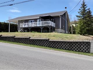 House for sale in Dégelis, Bas-Saint-Laurent, 300, 3e Rue Est, 21374065 - Centris.ca