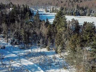 Terrain à vendre à Gore, Laurentides, Chemin  Stephenson, 26146374 - Centris.ca