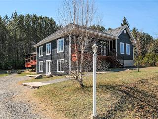 House for sale in Saint-Faustin/Lac-Carré, Laurentides, 161, Rue des Villageois, 15548409 - Centris.ca