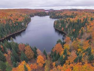 Terre à vendre à Wentworth-Nord, Laurentides, Chemin du Lac-à-la-Croix, 16349008 - Centris.ca