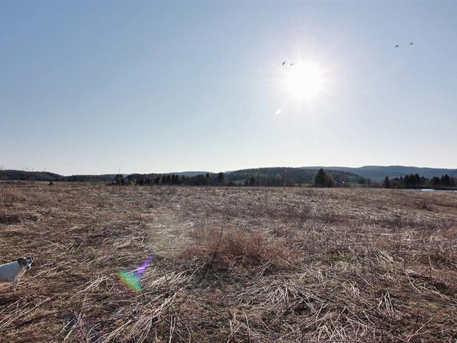 Terrain à vendre à Sainte-Thècle, Mauricie, Chemin  Saint-Pierre Sud, 11021756 - Centris.ca