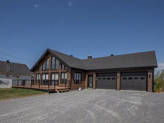House for sale in Saint-Narcisse-de-Beaurivage, Chaudière-Appalaches, 577, Rue  Saint-Louis, 26500161 - Centris.ca