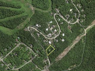 Lot for sale in Sainte-Adèle, Laurentides, Rue des Perdreaux, 10480785 - Centris.ca