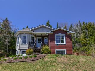 Maison à vendre à Saint-Faustin/Lac-Carré, Laurentides, 4, Chemin du Valais, 22180754 - Centris.ca