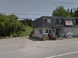 Commercial building for sale in Notre-Dame-de-la-Salette, Outaouais, 1692, Route  309, 19849059 - Centris.ca