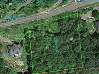 Terrain à vendre à Sainte-Anne-des-Lacs, Laurentides, Chemin des Capelans, 21790586 - Centris.ca
