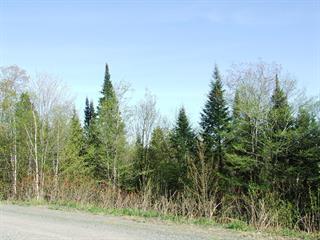 Lot for sale in Sainte-Anne-des-Lacs, Laurentides, Chemin des Capelans, 21790586 - Centris.ca