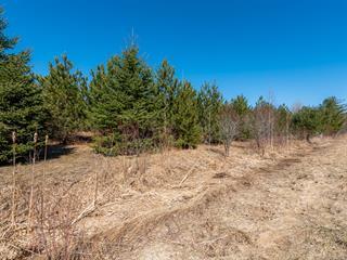 Terrain à vendre à Hemmingford - Canton, Montérégie, Chemin de Covey Hill, 20018225 - Centris.ca