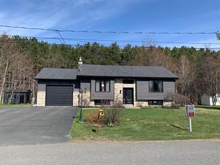 Maison à vendre à Saint-Cyrille-de-Wendover, Centre-du-Québec, 290, Rue  Vallières, 20310236 - Centris.ca
