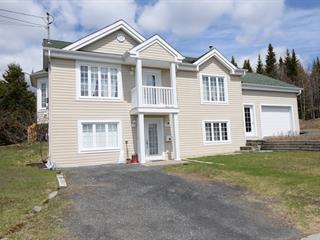Maison à vendre à Thetford Mines, Chaudière-Appalaches, 1477, Rue  Bilodeau, 19280319 - Centris.ca