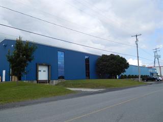 Bâtisse industrielle à vendre à Princeville, Centre-du-Québec, 20, Rue  Boulet, 10270203 - Centris.ca