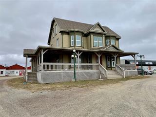 Bâtisse commerciale à vendre à Les Îles-de-la-Madeleine, Gaspésie/Îles-de-la-Madeleine, 153, Chemin  Principal, 19790263 - Centris.ca