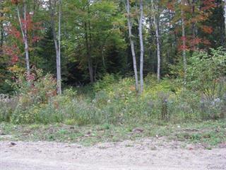 Terrain à vendre à Amherst, Laurentides, Chemin du Domaine-Pépin, 21860991 - Centris.ca