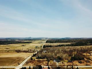 Fermette à vendre à Saint-Georges-de-Windsor, Estrie, 1248Z, Route  249, 28406994 - Centris.ca
