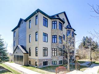Condo à vendre à Gatineau (Aylmer), Outaouais, 133, Rue d'Augusta, app. 2, 13044939 - Centris.ca