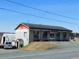 Commercial building for sale in Lac-Etchemin, Chaudière-Appalaches, 1333, Route  277, 23594496 - Centris.ca