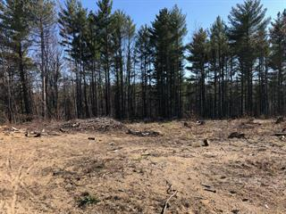 Lot for sale in Sainte-Mélanie, Lanaudière, Rue des Cosmos, 15506623 - Centris.ca