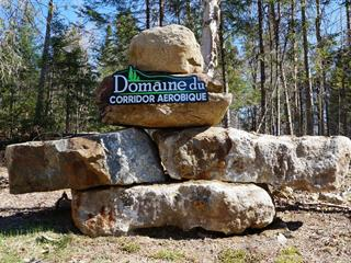 Lot for sale in Morin-Heights, Laurentides, Rue  Davis, 11003446 - Centris.ca