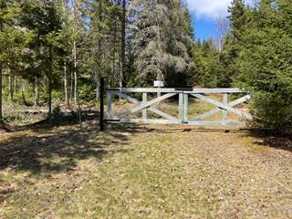 Lot for sale in Sainte-Agathe-des-Monts, Laurentides, Chemin du Mont-Arpin, 27661986 - Centris.ca