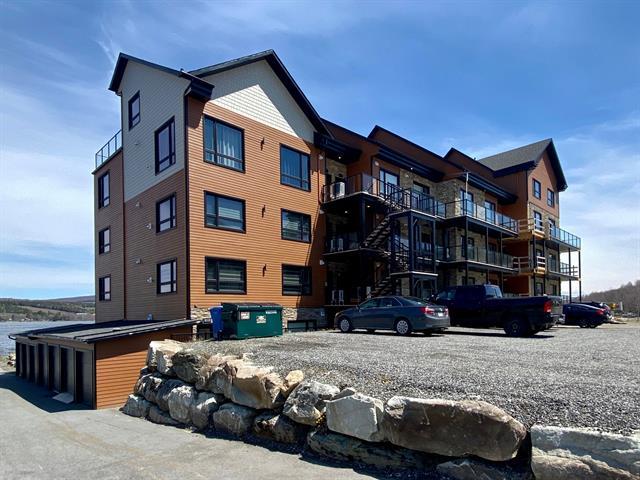 Condo / Apartment for rent in Saint-Ferdinand, Centre-du-Québec, 1035, Rue  Principale, apt. 203, 15016325 - Centris.ca