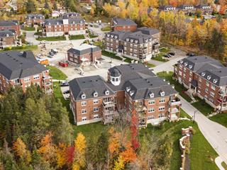 Income properties for sale in Sherbrooke (Les Nations), Estrie, 1400B, Rue  Émile Zola, 13831507 - Centris.ca