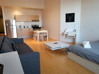 Loft / Studio à louer à Montréal (Le Plateau-Mont-Royal), Montréal (Île), 4205, Rue  Saint-Denis, app. 207, 21005349 - Centris.ca