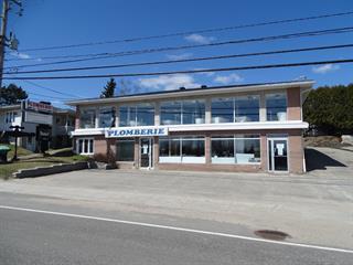Bâtisse commerciale à vendre à Mont-Laurier, Laurentides, 1141, boulevard  Albiny-Paquette, 13343045 - Centris.ca